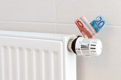 Urteil: Co2-Bepreisung und Erhöhung des Wohngeldes